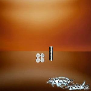 (2x) Efest Pluspol Magnete