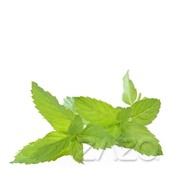 ZAZO Peppermint