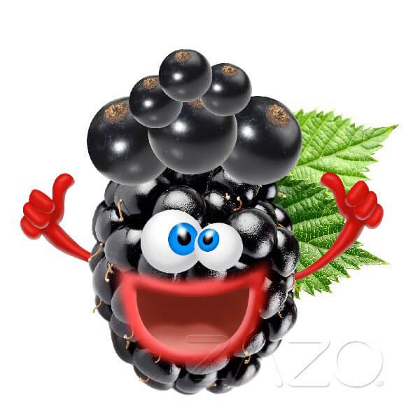 ZAZO Crazy Berries