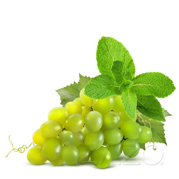 ZAZO Grape Mint