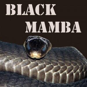 Aroma Pink Spot Black Mamba